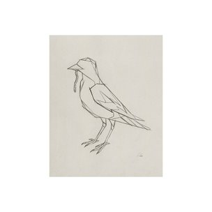 Picture of 101791-S -Geo Robin (20 x 25)